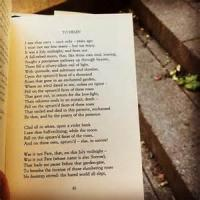To Helen (poem Of Youth)