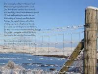 Sonnet 38: Winter
