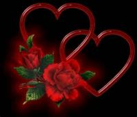 To One Who Loves Red Roses