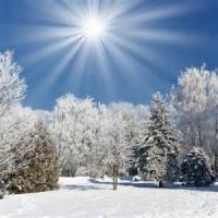 Sunny Days In Winter