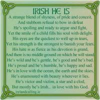 An Irish Face