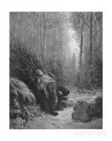 The Forest And The Woodcutter
