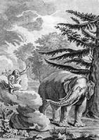 The Elephant And Jupiter's Ape