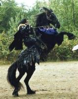 Of War Horses, Or Destriers