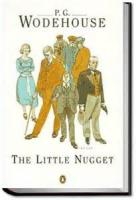 The Little Nugget - Part 2 - Peter Burns' Narrative - Chapter 1
