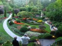 The Sunken Garden