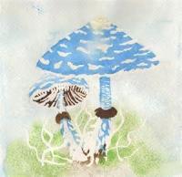 Mushroom Song