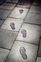 Footsteps In The Street
