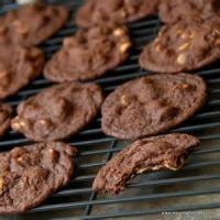 Cookies - Drop Cookies Reese's Chewy Chocolate Cookies