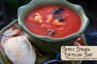 Crock_pot - Soup -  Home-made Potato Spinach Soup