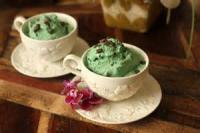 Diabetic - Mint-chip Ice Cream