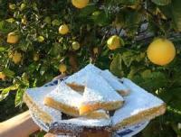 Cookies - Lemon-orange Squares With Twist