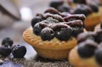 Fruit - Blueberry -  Blueberry Tart