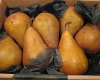 Fruit - Pear -  Harvest Pear Crisp