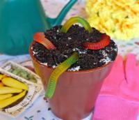 Kids - Dessert -  Edible Dirt