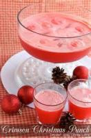 Drinks - Punch -  Tropical Holiday Punch