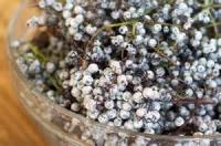 Drinks - Elderberry Wine