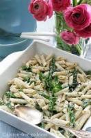 Pasta And Pastasauces - Barbara's Pasta Salad