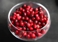 Low_fat - Sauce -  Fresh Cranberry-orange Relish