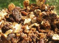 Snacks - Passover Granola