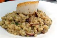 Vegetables - Wild Mushroom Barley Risotto