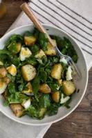Vegetables - Potato Salad -  Garlicky Roasted Potato Salad
