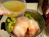 Poultry - Chicken -  Chicken Inside Dumplings
