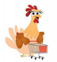 Poultry - Chicken -  Chicken Mascote