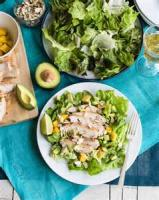 Poultry - Chicken Salad -  Warm Chicken Salad With Oranges And Almonds