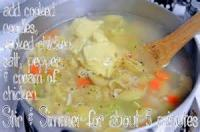 Poultry - Chicken Soup -  Chicken Noodle Soup