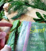 Preserving - Herbed Oils