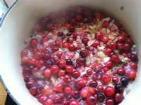 Preserving - Easy Cranberry Chutney