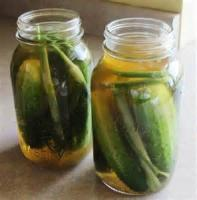 Preserving - Dill Pickles