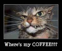Where's My Coffee??