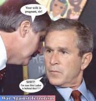 Stupid Bush