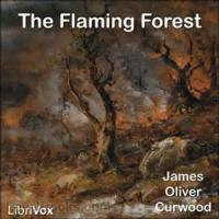 The Flaming Forest - Chapter 8