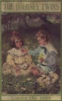 The Bobbsey Twins At Snow Lodge - Chapter 13. In A Hard Blow