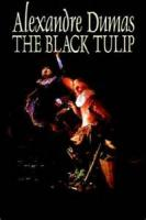 The Black Tulip - Chapter 12. The Execution